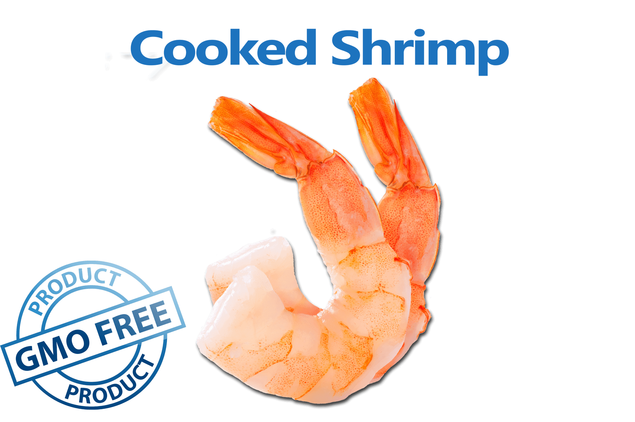 great tasting cooked shrimp from the american shrimp company